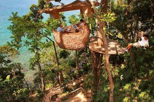 Feast Among the Trees at Dining Pod in Thailand