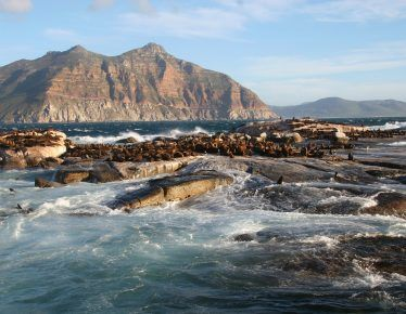 Amazing Tidal Pools in Cape Town: A Local's Guide
