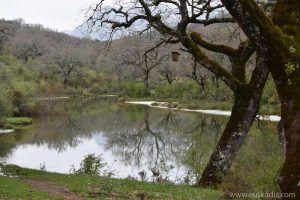 Canal de Campobuche y el caíllo