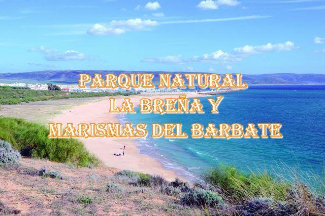 🌲 Parque Natural La Breña y Marismas de Barbate 🌲 Los mayores secretos y trucos para sus senderos