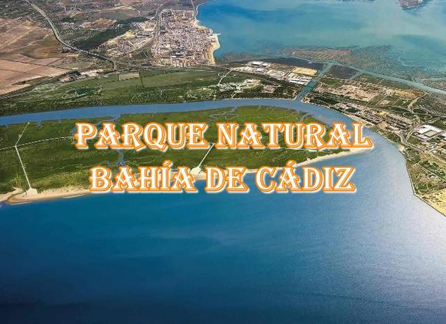 🌲 Parque Natural Bahía de Cádiz 🌲 Los mayores secretos y trucos para sus senderos