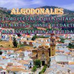 Algodonales
