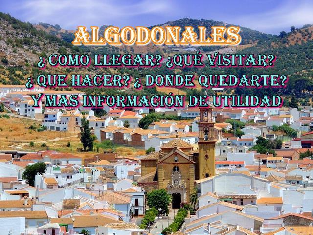 ▷✔️ Algodonales , Conozca  todo de este pueblo de ´la provincia de cádiz