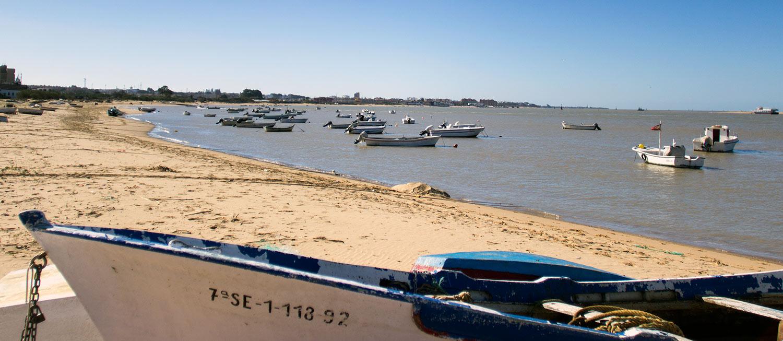 ▷ 🌊 Playa de Bonanza ✅ Lo que debes saber antes de ir 🏖️ sanlúcar de barrameda
